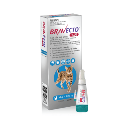 Bravecto Plus Spot-On Gatos Médios 2,8 - 6,25Kg