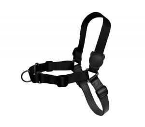 Zee.Dog Gotham Soft-Walk Harness
