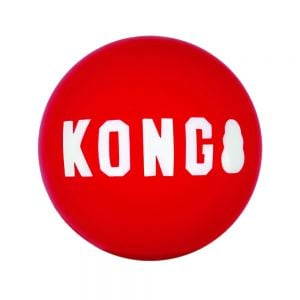Kong Signature Balls Medium Bulk