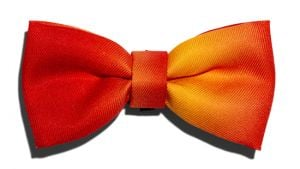 Zee.Dog Bow Tie Solaris