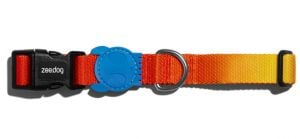 Zee.Dog Collar Solaris