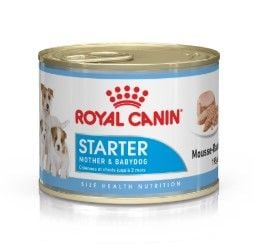 Royal Canin Starter Mousse | Wet (Lata) 12 X 195 g
