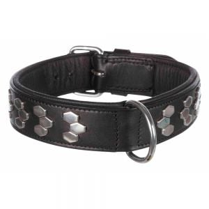 "Trixie Collar Leather w/ metal applic. ""Active"" (Black)"